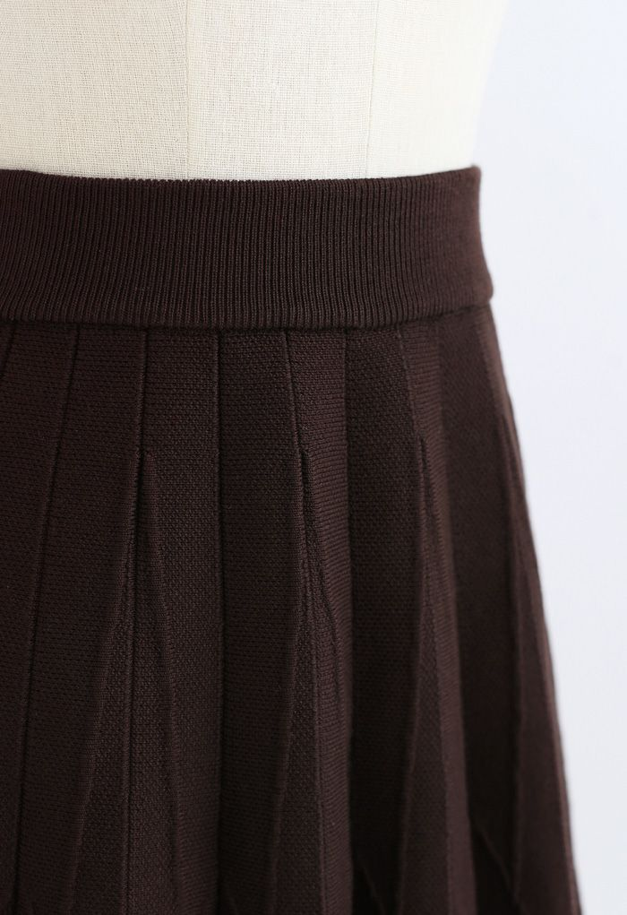Stripe Pleated A-Line Knit Skirt in Brown